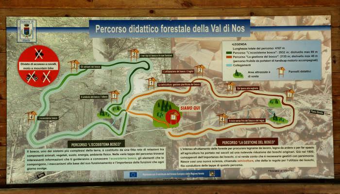 Val-di-Nos-Gallio-Anello-Didattico-Forestale-D01