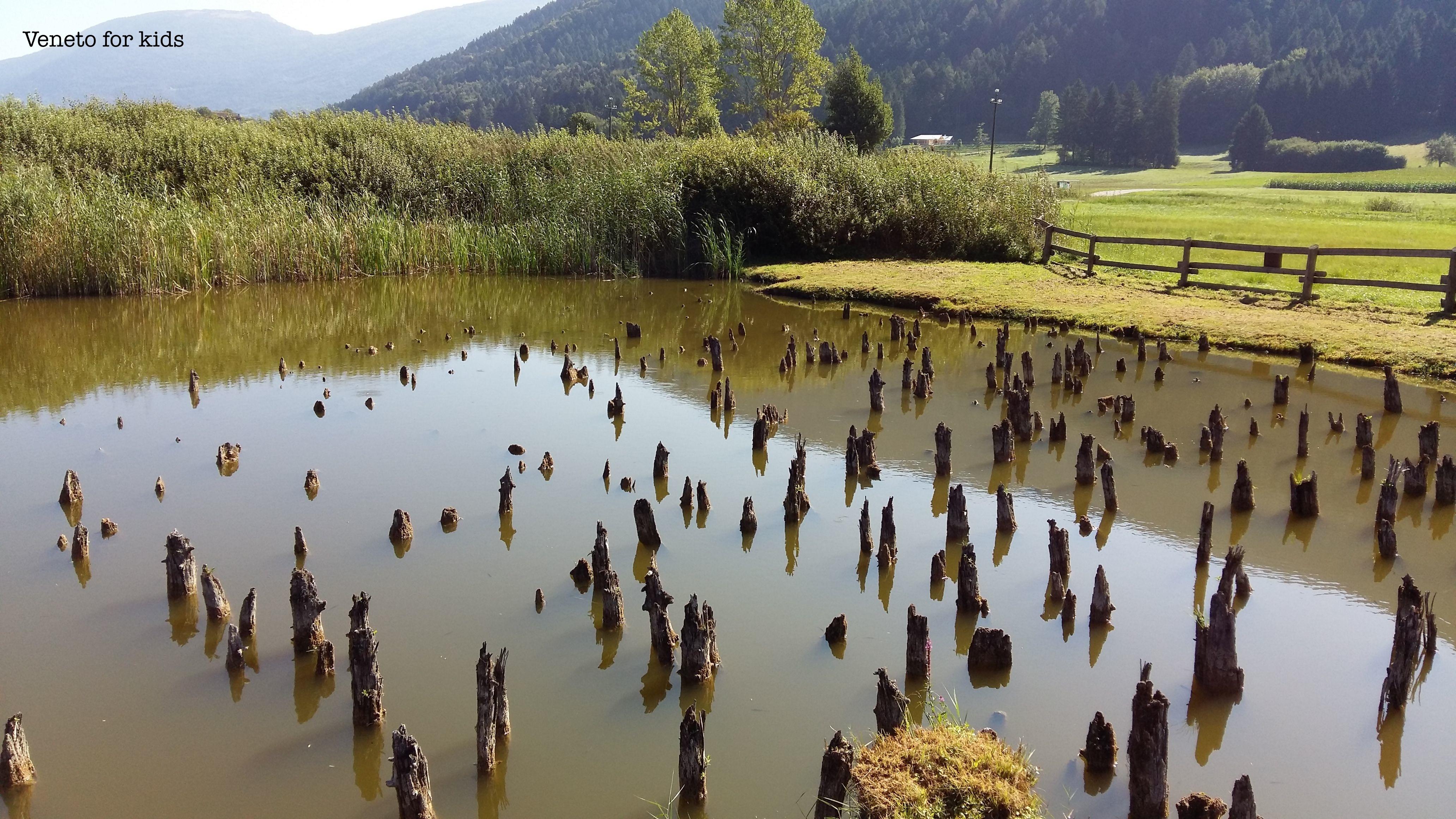 area archeologica di fiavé