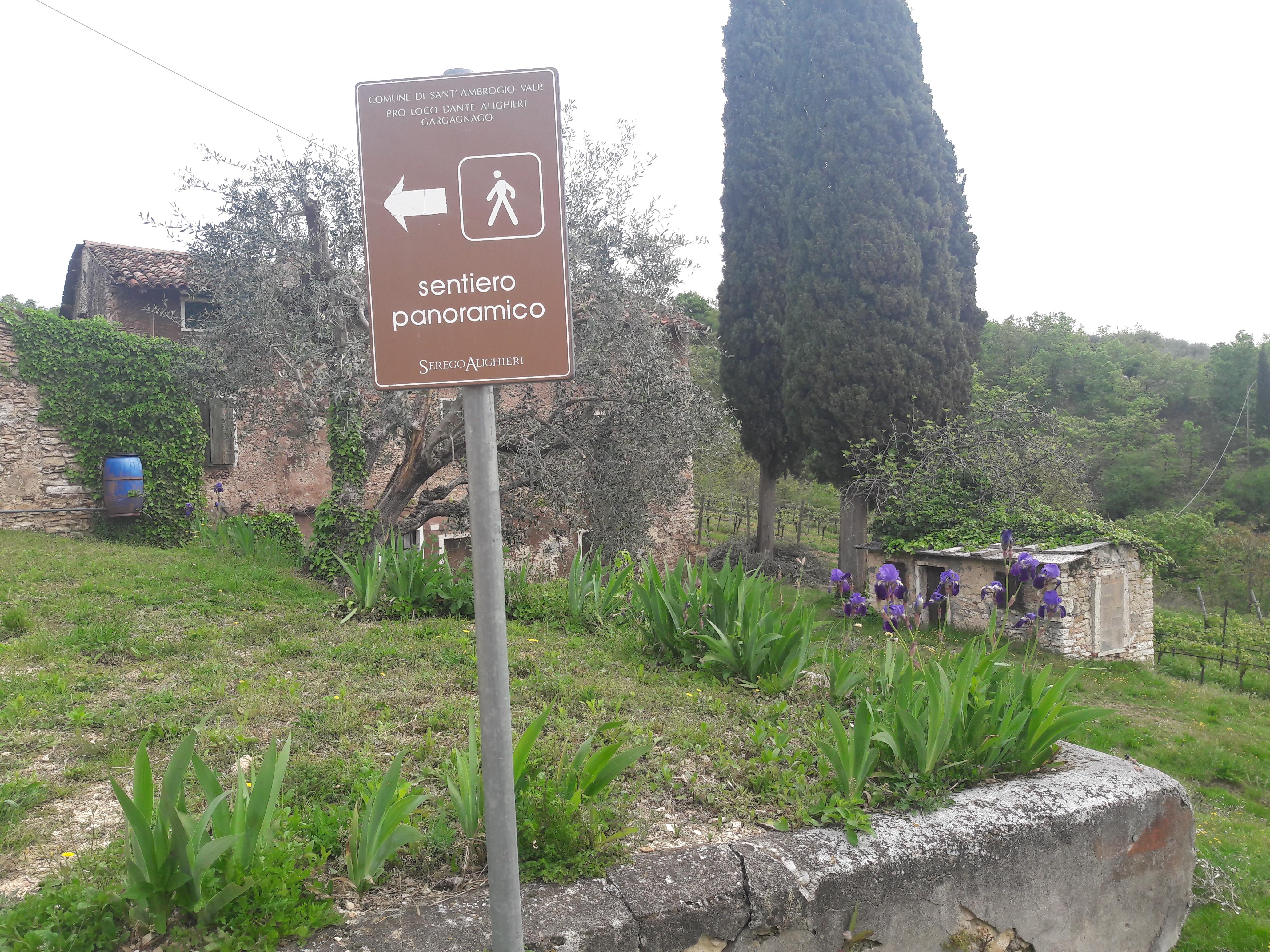Passeggiata in Valpolicella