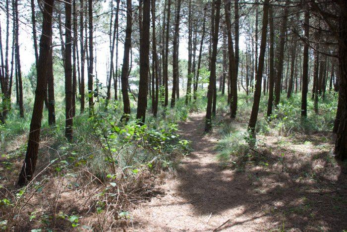 oasi Valle Vecchia