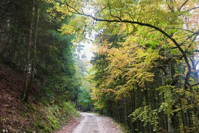 autunno folgaria